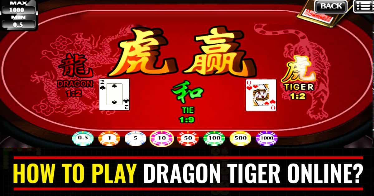 Cara Jitu Pemula Main Judi Dragon Tiger Online Ampuh